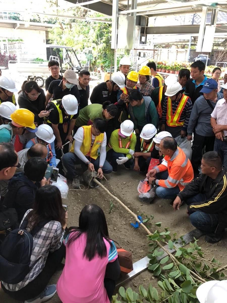 台中市加強景觀從業人員專業技能,提升市民生活環境品質。(台中市建設局提供/盧金足台中傳真)