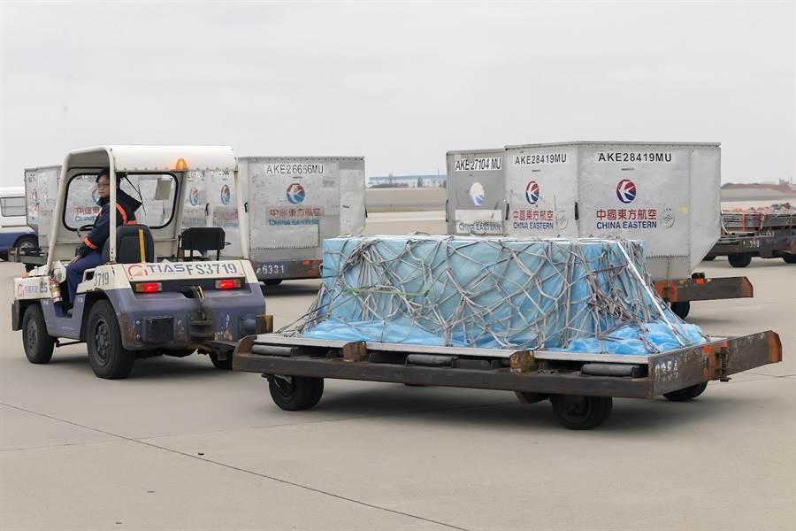 地勤人員以拖車將高以翔的靈柩拖往長榮空運倉儲機放倉準備進行迎靈儀式。(陳麒全攝)