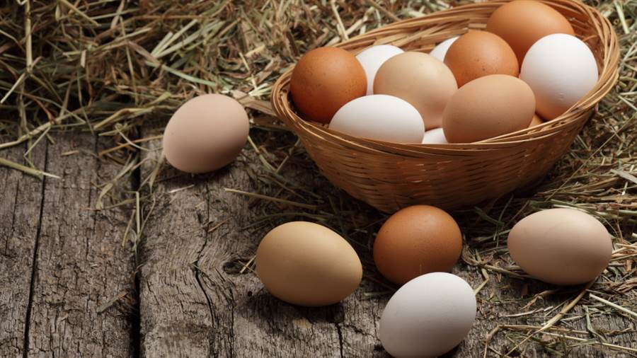蛋殼顏色深更營養?專家答案驚人。(圖/達志影像)