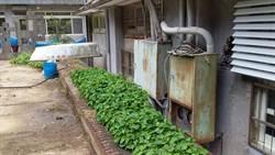 萬里國中電力系統老舊 校長呼籲國教署協助改善