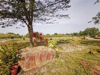 埔心環保植葬不立碑造墳 公園綠化民眾布置增添溫度
