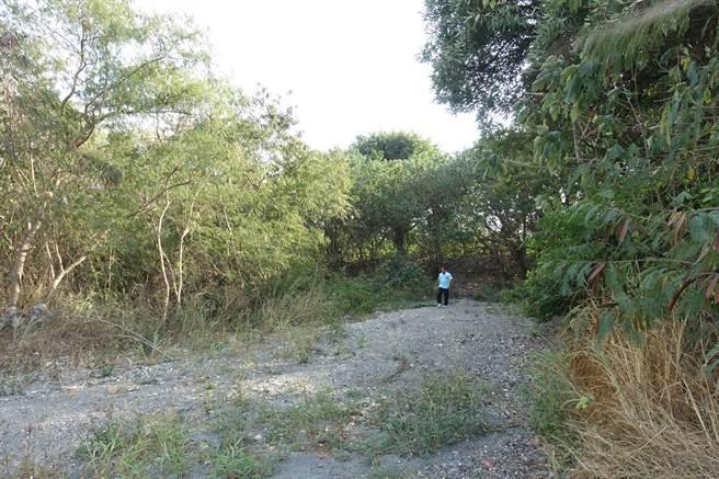 舊堤防(人走出來的地方)在70年前被沖毀一次後,土堤殘破不堪。(周麗蘭攝)