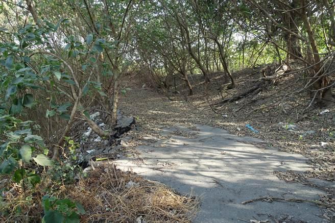 舊堤防在70年前被沖毀一次後,土堤殘破不堪。(周麗蘭攝)