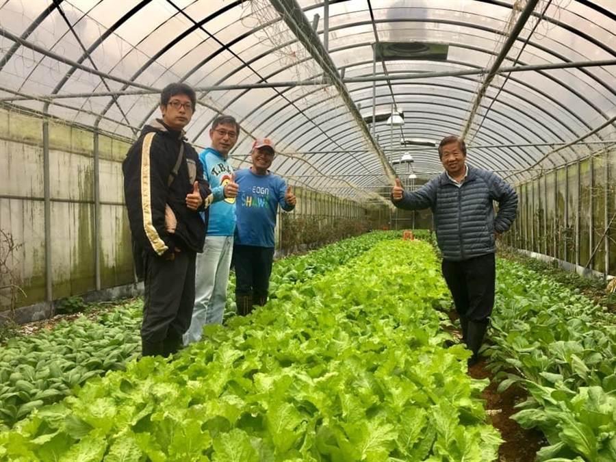 成立有機農業合作社後,有機農將不用再單打獨鬥,可以合力一起將好的農特產賣出去。(新北市石門區公所提供/張睿廷新北傳真)