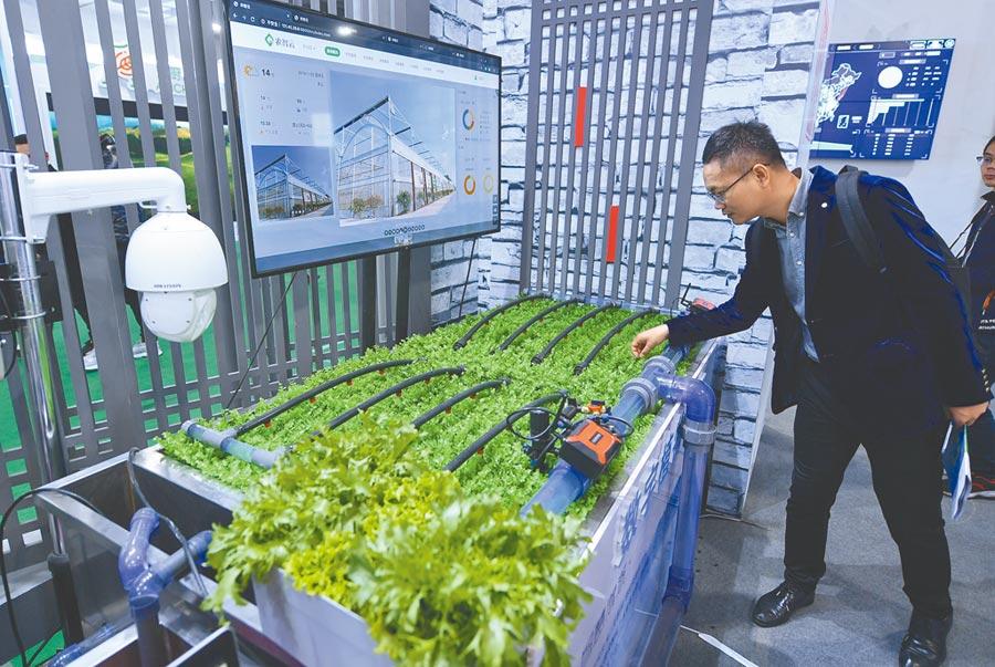 11月22日,民眾在2019浙江農業博覽會參觀基於雲計算、區塊鏈的智慧無人灌溉系統。(中新社)