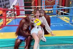 妹子遭2猩猩玩弄揉胸 本尊神到了