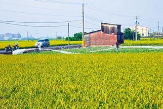 立院修法 農地可蓋初級加工場