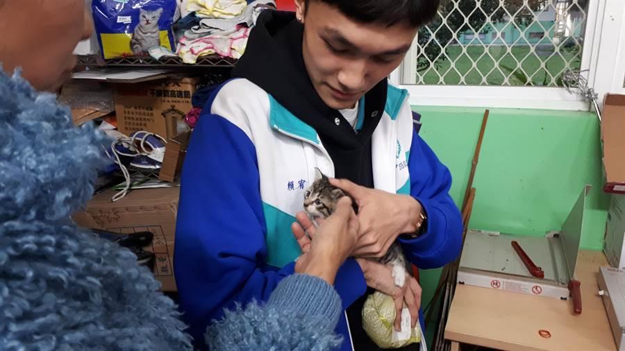 羅東高商學生與貓咪互動情形。(教育部提供/林志成台北傳真)