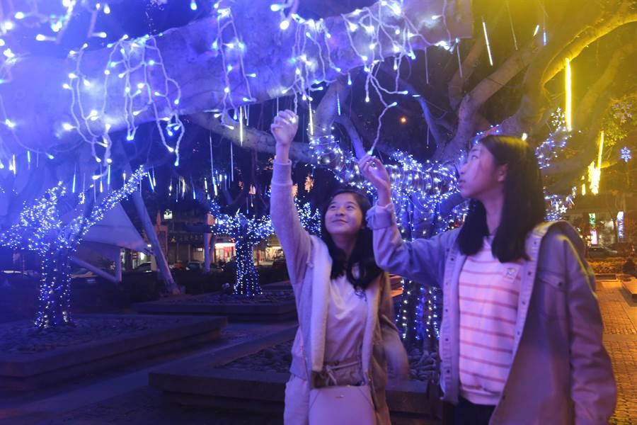 葫蘆墩文化中心於榕樹園區布置螢藍燈海,塑造火樹銀花、浪漫優雅的夜色美景。(葫蘆墩文化中心提供/王文吉台中傳真)