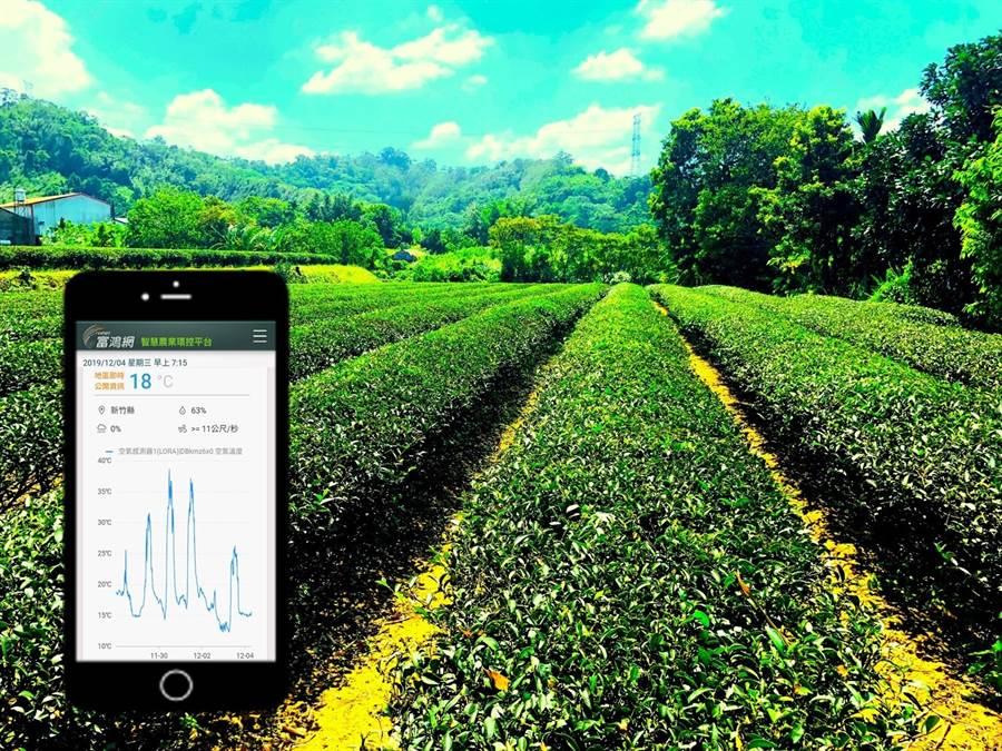 富鴻網運用物聯網及大數據技術助政府推動智慧農業,結合共享經濟,創造臺東六級智能農業。(亞太電信提供/黃慧雯台北傳真)