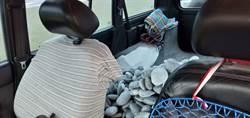 大力女盜採奇石 1小時搬620公斤