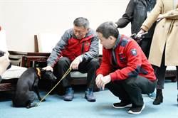 鍾小平表揚抓出卡神的「柯黑」 柯盼有人認養