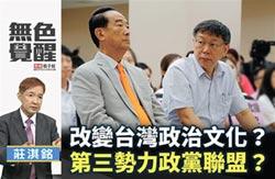 台灣不要泡肉桶的第三勢力
