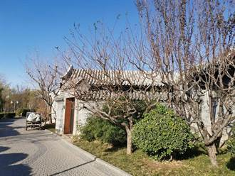 台灣人在大陸》在一間間小房子裡造夢