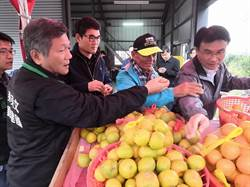 陳吉仲、劉建國關心柳丁產銷