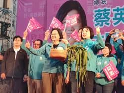 蔡賴屯區合體拉抬立委參選人何欣純聲勢