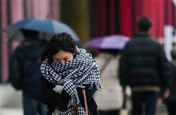 冷氣團發威!周一11縣市跌破10度 一張圖看這天轉濕冷