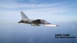馬國欲購輕型戰機 不中意韓FA-50