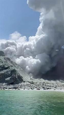 紐西蘭火山曾滅掉懷特島 僅1隻貓倖存