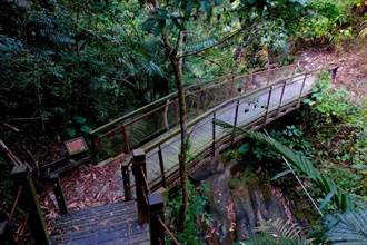 打造登山體驗新亮點  蝙蝠洞登山步道部分封閉施工