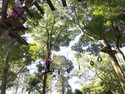 友善好宅!國聚建設帶住戶享受攀樹、溜索、漆彈體驗