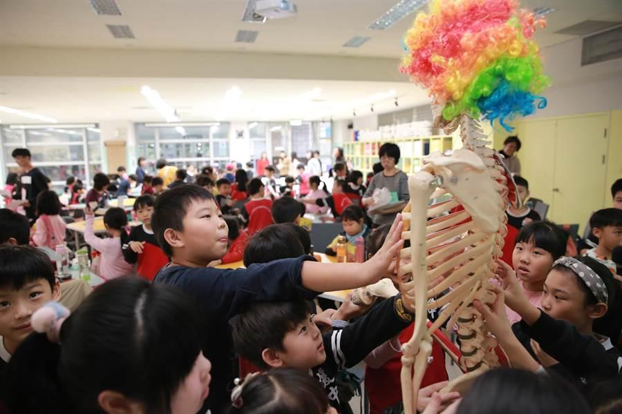 援中國小學童日前參訪高雄大學,對「史密斯先生」(人體骨骼模型)感到好奇。(林瑞益攝)