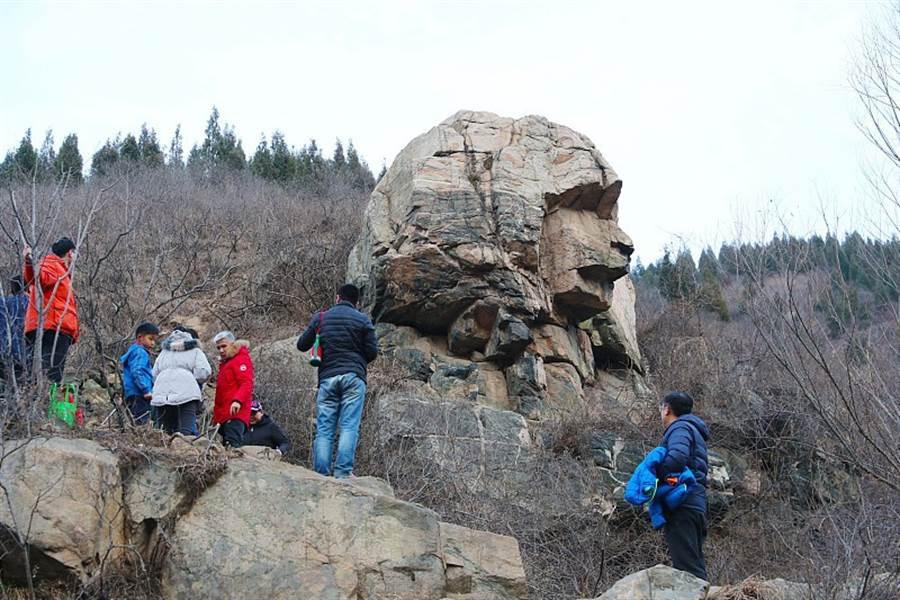 山東濟南山區一岩石神似「獅身人面像」 吸引民眾紛紛觀看打卡,還有人組織上百人的觀光團前往觀賞。(圖/新浪網)