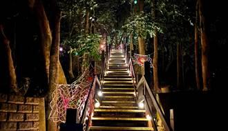 光之吊橋透繽紛!台南龍崎「空山祭」打造魔幻仙境