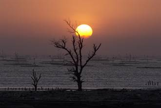 白水湖壽島新亮點 堤頂步道落日美景盡收眼底