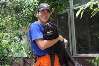 訓練費時、專業培養不易 控犬員:搜救犬不是宣導品