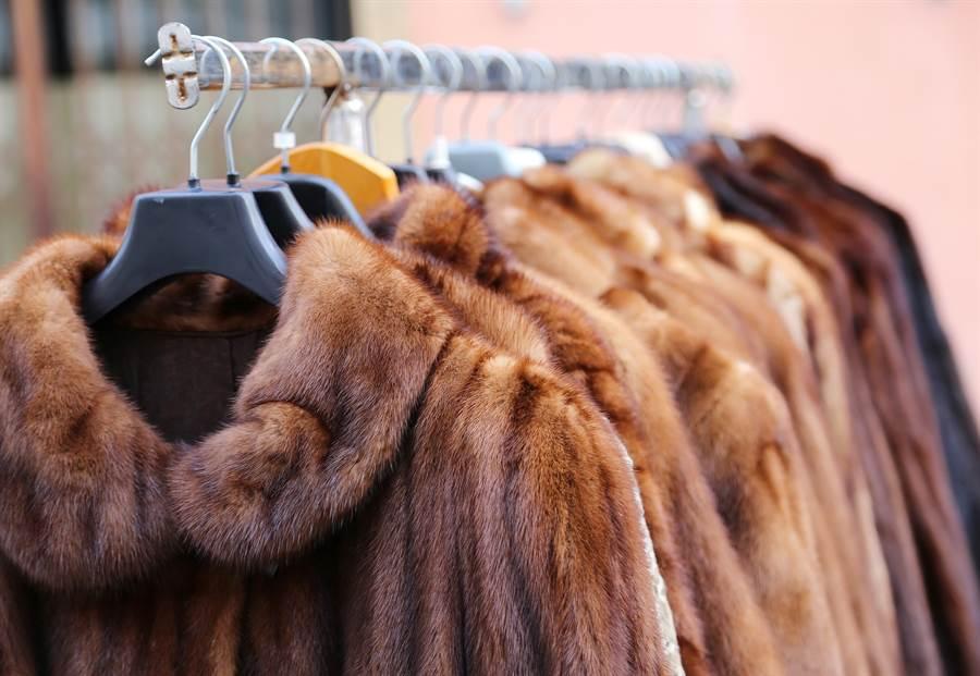 皮草大衣(圖片取自/達志影像)