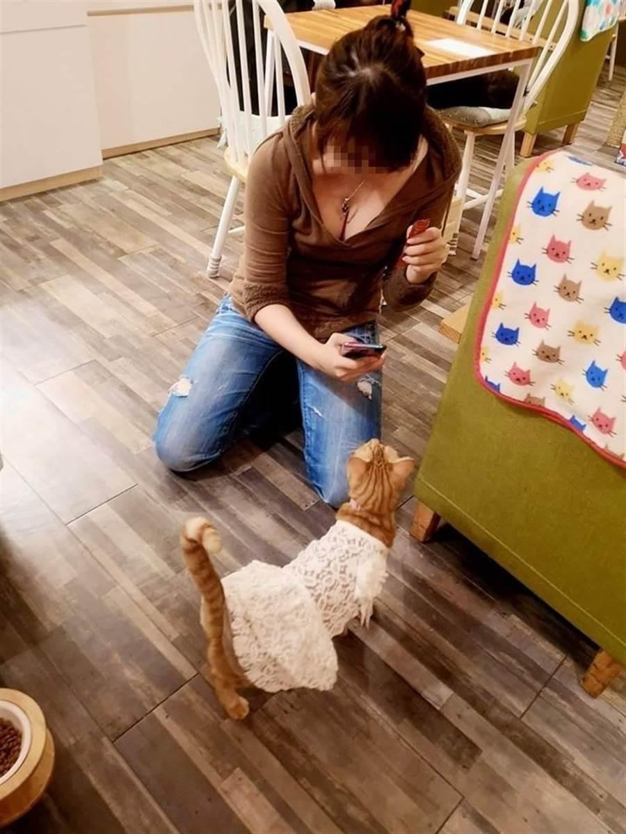 網友在咖啡廳碰到一名正妹不小心露出魔鬼般的身材。(圖翻攝自FB/加藤軍路邊隨手拍)