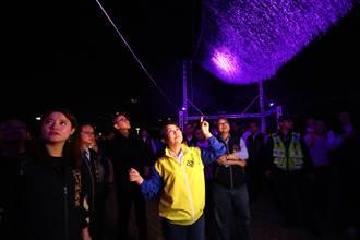 全台最早燈會在台中!盧秀燕為2020台灣燈會副展區點燈