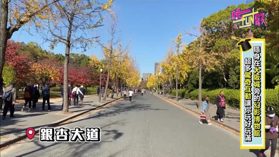 明媚暖色的銀杏大道 圖/蔡惠綸、陳威成 攝影