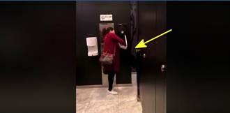 大媽廁所內上演「龍捲風式」抽紙 網:打詠春是吧
