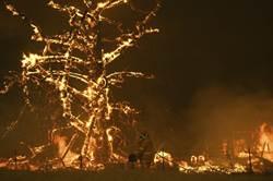 澳洲野火耶誕節後恐惡化 老翁機智保一命