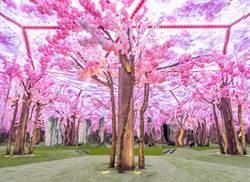 嘉義市文創園區萬花筒特展好好拍 抽東京來回機票