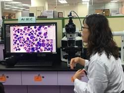 AI輔助骨髓細胞分類 台大建立世界最大標註資料集