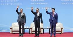 陸日韓領導人會議發聲明 展望未來十年