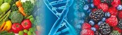 自然美酵素結合NMN 打造健康體態