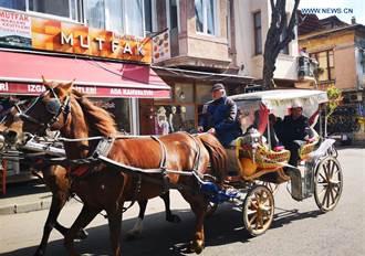 伊斯坦堡很夯的景點王子島將搭不到馬車 因為......
