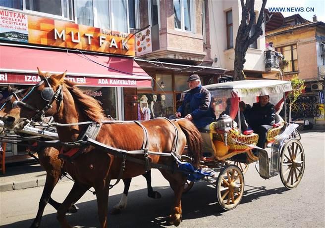 伊斯坦堡知名景點王子島將禁止四輪馬車。(新華社)