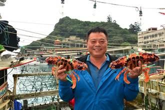 周六日來野柳!萬里蟹年末感蟹福袋嘗美味