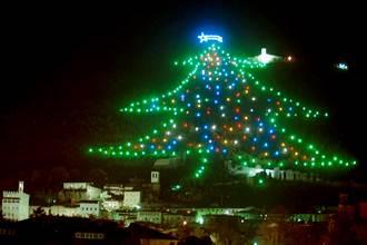 叫我第一名!義耶誕樹高750米
