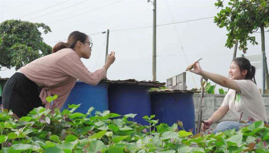 青年進行社區職場體驗,從事宣傳影片拍攝。(教育部提供/林志成台北傳真)