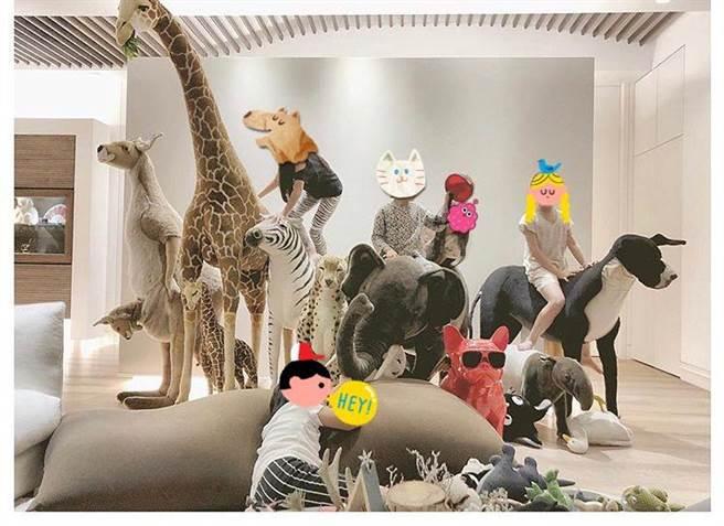 曹格一家人愛動物,也收藏許多動物公仔。(就是音樂提供)
