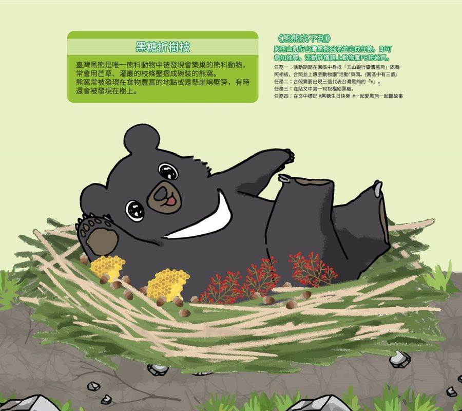 亞洲黑熊「黑糖」會自己築巢。(台北市立動物園提供)