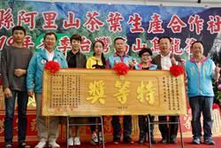 嘉縣》冬季高山烏龍茶比賽頒獎 李振光奪青心烏龍組特等