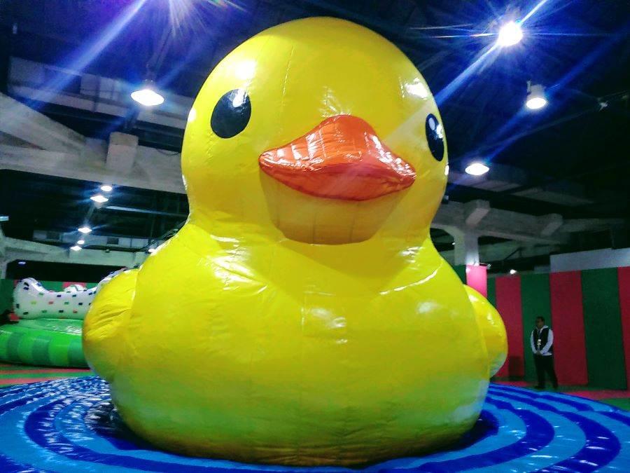 霍夫曼的黃色小鴨「游」進華山文創園區開展囉!在「療癒動物園」等著大小朋友與牠見面!