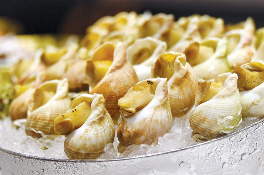 〈旭集〉標榜不只讓客人吃到飽,更要「吃到寶」,所以取餐檯上有許多高成本食材,圖為法國的蛾螺。圖/姚舜